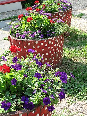 Beekeeper's Flowers2