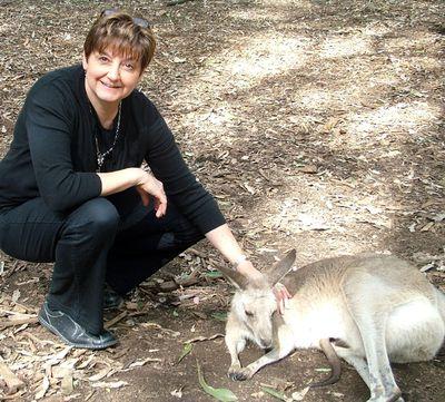 Koala Park8